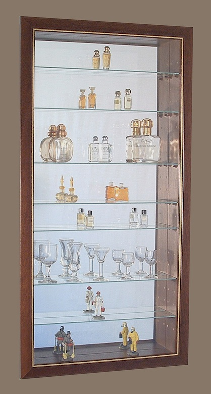 vitrine pour collection